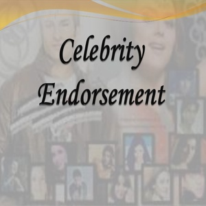 From Celebrity Endorsement to Influencer Engagement