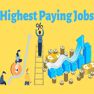 Top Highest Paying Jobs in India 2020