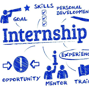 How to Make Your Internship Productive