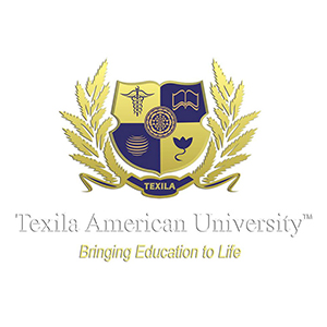 Texila American University - scholarships for Indian students to fulfil the