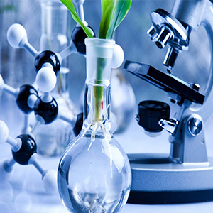 Career Prospects and Scope of Biotechnology
