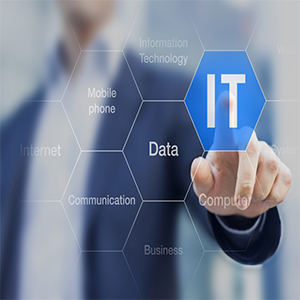 What Skills do you need to have to serve as an I.T. employee?