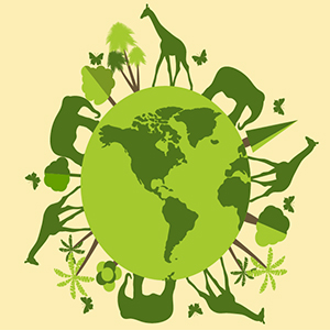Top Career Choices in Environment Protection