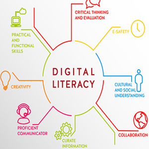The Need for Digital Literacy